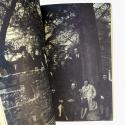 Un tiempo sin fisuras. La institución moderna del arte en Chile (1947–1968)