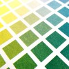 Afiche Colores Roland Barthes